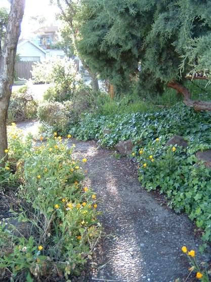 nature-path.jpg