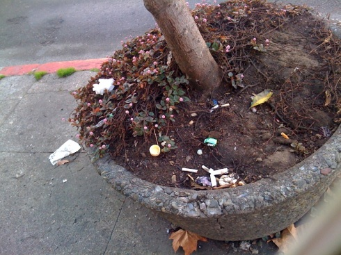 People even throw trash into planters, which are meant to beautify the city.