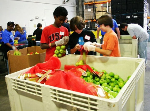 students sorting food bank apples